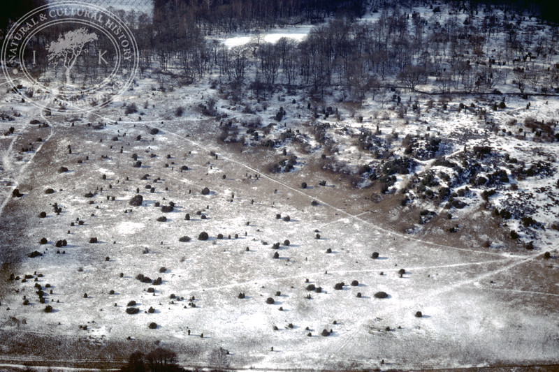 Landscape between Stenshuvud and Rörums norra å  - with prehistoric remains (20 February, 1988). | LH.0182