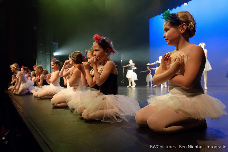 Demodag Balletstudio Geraldine 2015 (32).jpg