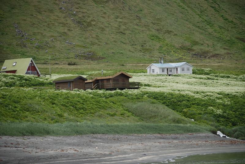 Jónshús, Fjósatunga og Móhús á Sæbóli í Aðalvík.
