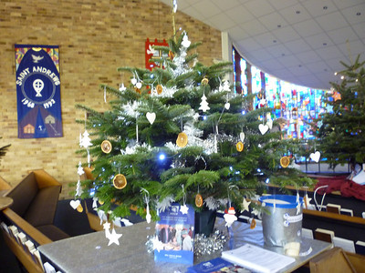 Christmas Tree Festival 2010 - Individual Trees