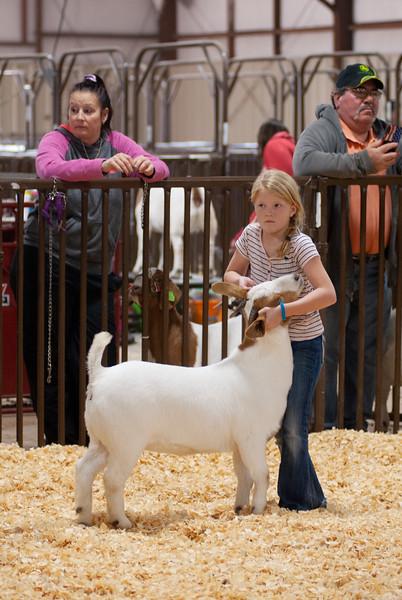 kay_county_showdown_goats_20191207-84.jpg