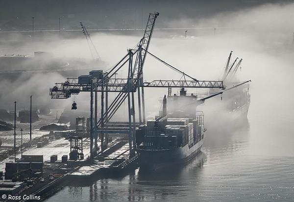 Sea Fog over Wellington Harbour 2020