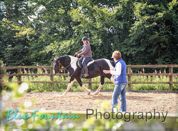 Cowboy Dressage Clinic at Sally Spencer's