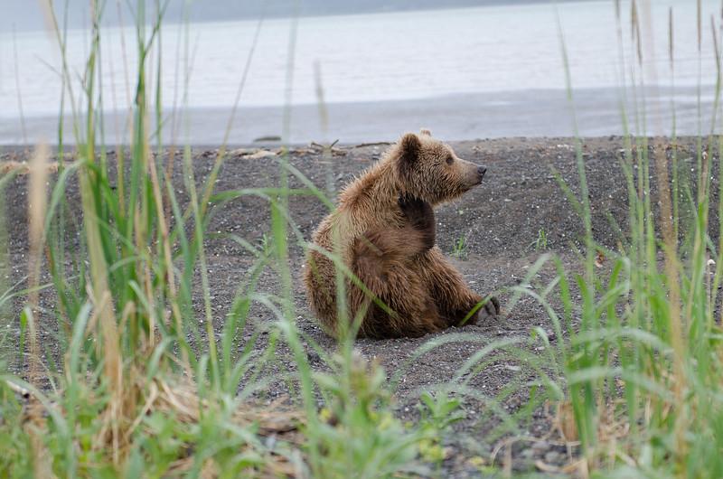 Alaska-8297.jpg