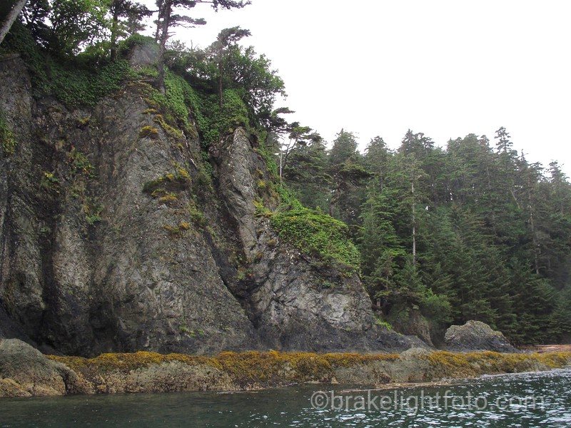 Rocky Shore of Cape Knox