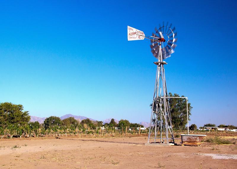 IMG_5561 windmill 2.jpg