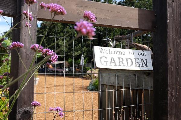Lafayette Community Garden 6.27.19  * PROOFS *