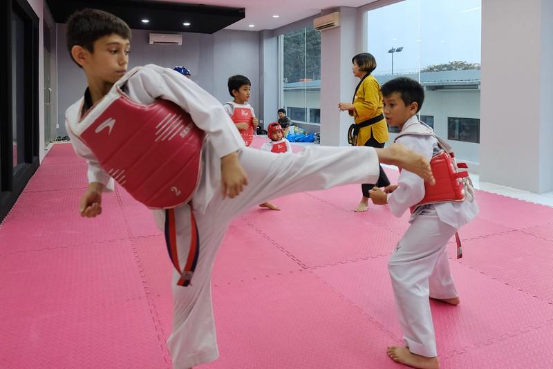 INA Taekwondo Academy 181016 003.jpg