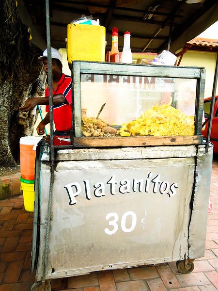 plantantitos_4855081049_o.jpg