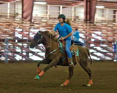 WH Rider Horses