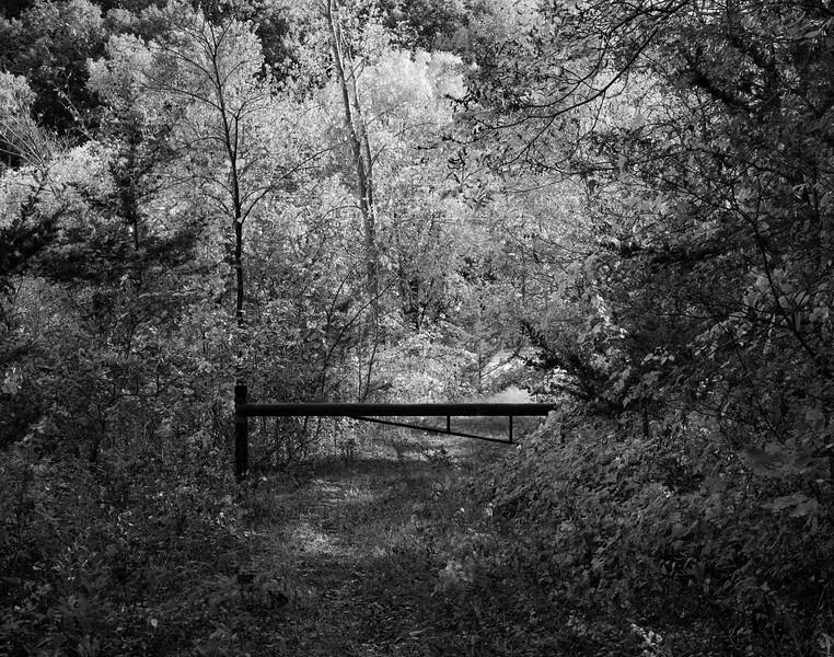 09-28-2020-nature-area.jpg