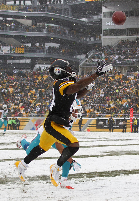 . Antonio Brown #84 of the Pittsburgh Steelers can\'t make a catch Miami Dolphins during the game on December 8, 2013 at Heinz Field in Pittsburgh, Pennsylvania. (Photo by Justin K. Aller/Getty Images)