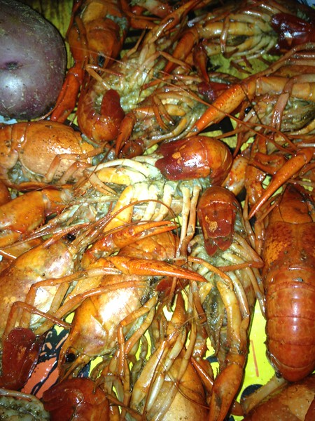 Rock-It D.J.s are great for Crawfish Boils!!!