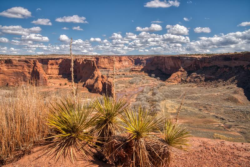 Canyon de Chelly 2020-2.jpg