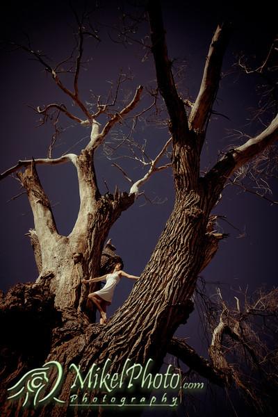natasha_giant_tree_2011-01-29_029.jpg