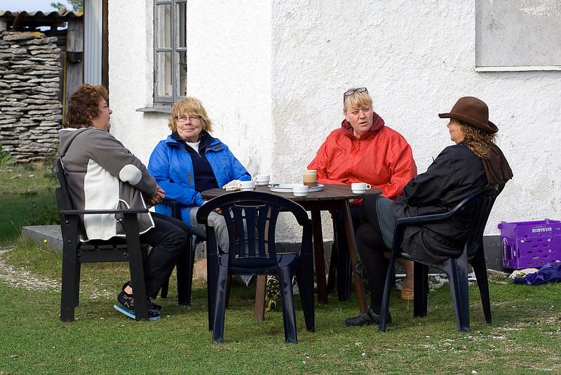 Gotland 20110608_0052.jpg