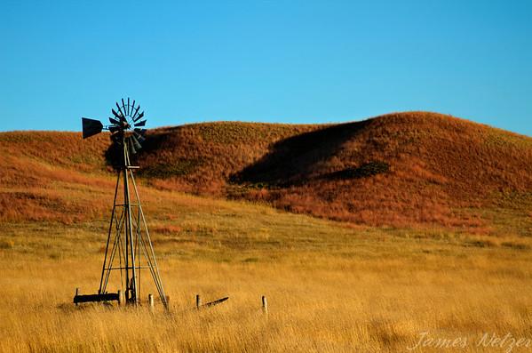 Diede Ranch