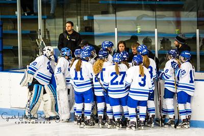 Jefferson Girls Hockey 2017-2018 Season