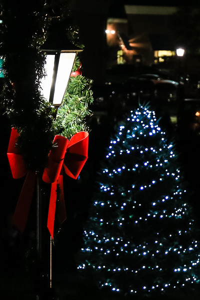 2014 Dec - Harrisburg Christmas Tree Lighting-0095.jpg