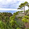 Blick vom Mirador in die Schlucht von Izcagua in Puntagorda in La Palma