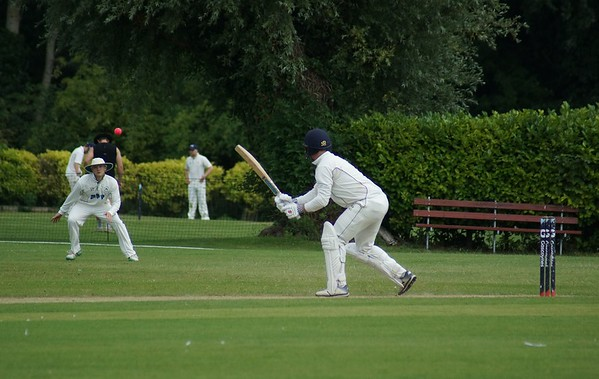 Cricket-mh