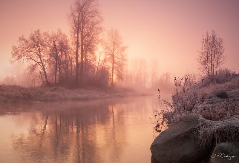 Morning Misting 04.02.2020