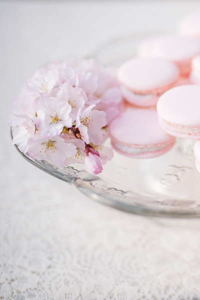 Cherry Blossoms (29 of 182).jpg