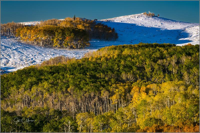 SR3_8418 Boulder Mtn Fall Color LPN r1W.jpg