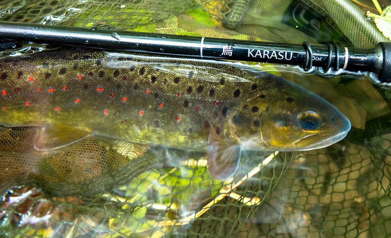 A beautiful tenkara rod named Karasu