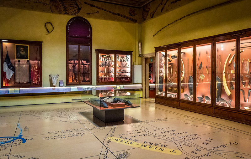 Museum of Natural History, Venice