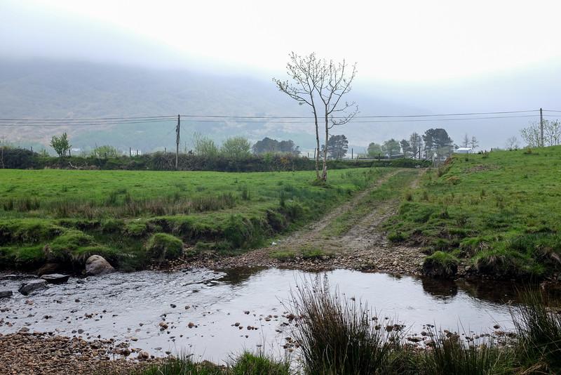 IrelandPIX-2016-1530.jpg