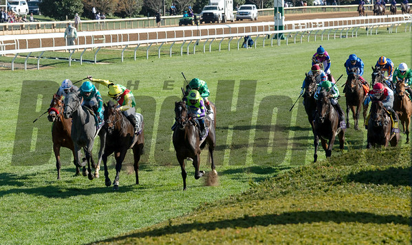 Filly & Mare Turf