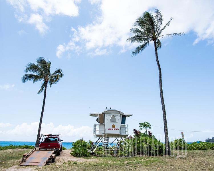 Kauai2017-271.jpg