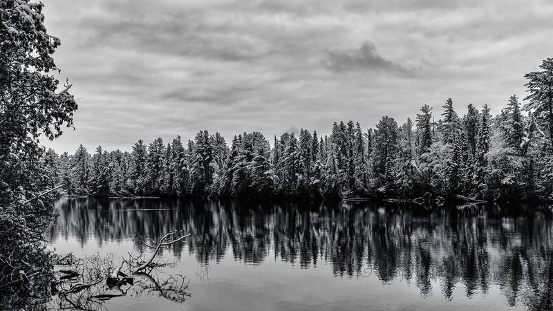 Tahquamenon River Winter Monochrome