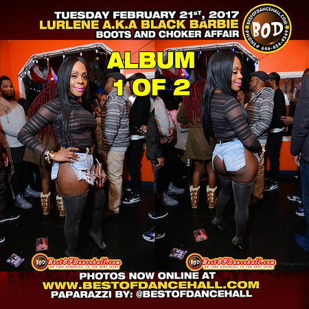 2-21-2017-BRONX-ALBUM 1 OF 2 for Lurlene Aka Black Barbie Presents Boots And Choker Affair
