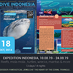 200x186-SDSDA-Newsletter-Courses-indo.png