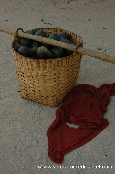 Avocados and a Monk's Robe - Inle Lake, Burma