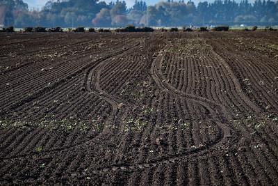 180423_farm_soil_large