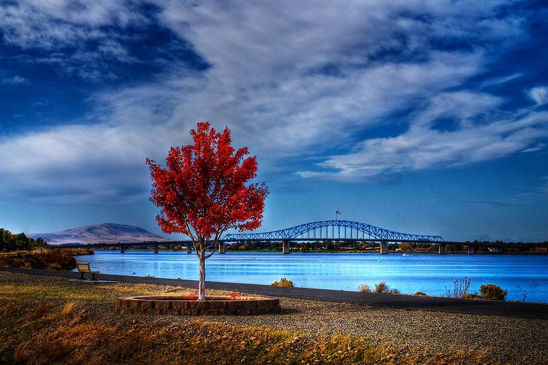 The Columbia River, the Blue Bridge and Rattlesnake Mountain, Kennewick, Washington.