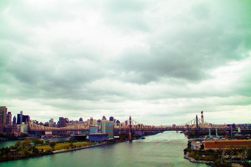 queensboro bridge IMG_5694.jpg