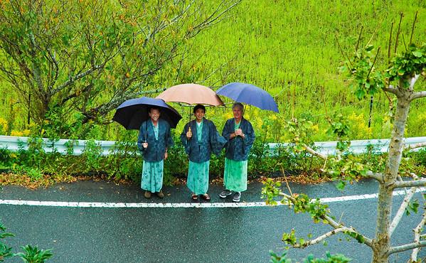 Japan: Tokyo, Kyoto, Nara