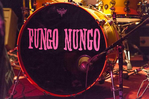 Fungo Mungo