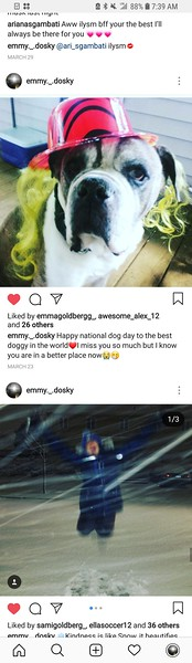 Screenshot_20180709-073934_Instagram.jpg
