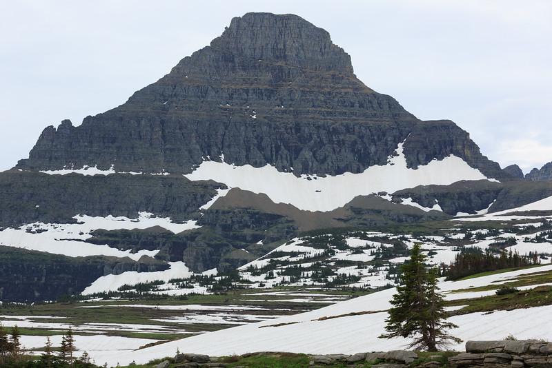 2014_07_15 Glacier National Park 030.jpg