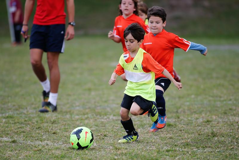William Pedraja Soccer