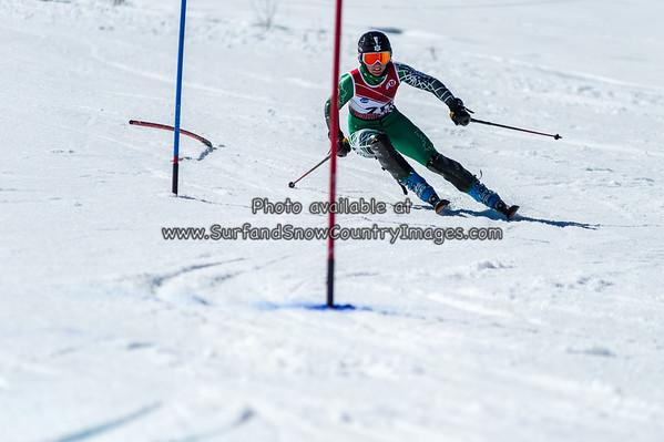 2014 Dartmouth Slalom (upd 3-17)