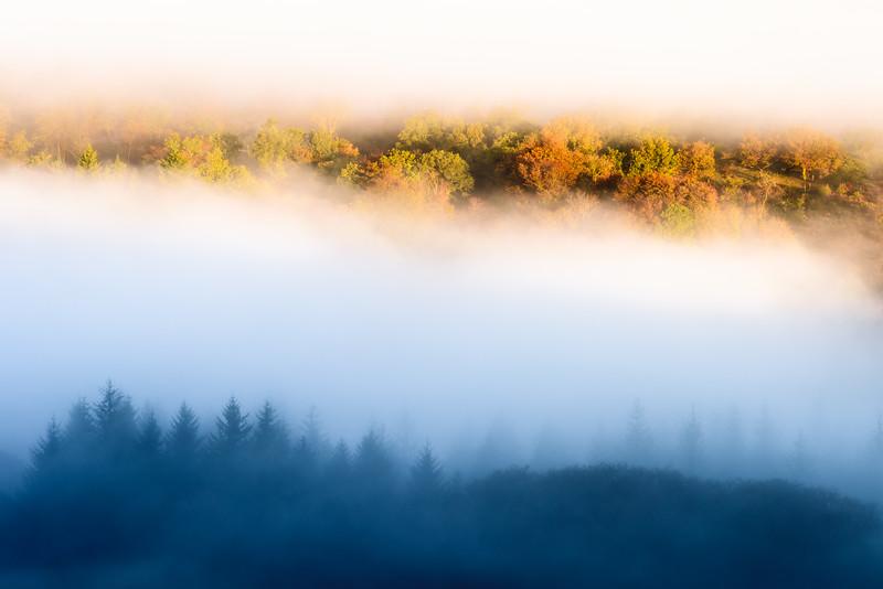1167_Dartmoor.jpg