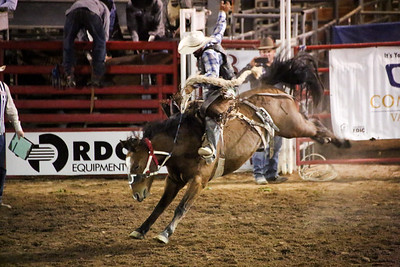 2017 Brawley Cattle Call Rodeo