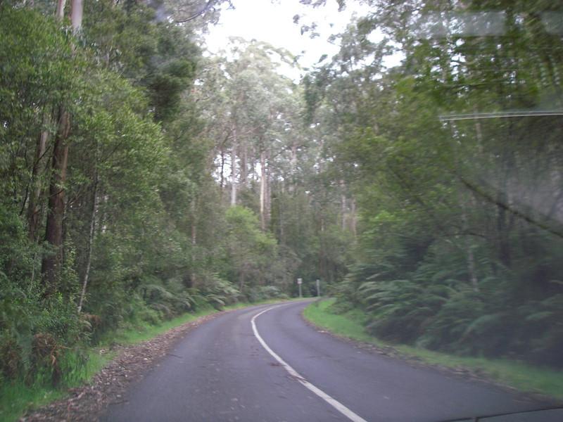 Great Ocean Road 145.JPG