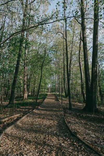 Ecosystem Preserve & Prince Pond